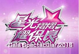Gala Spectacular 2016 – 星光熠熠耀保良