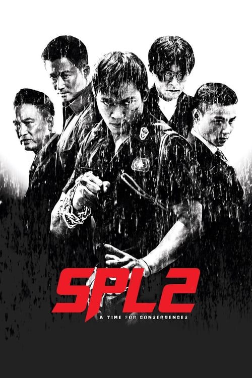 SPL II: A Time for Consequences – 杀破狼2 [2015]