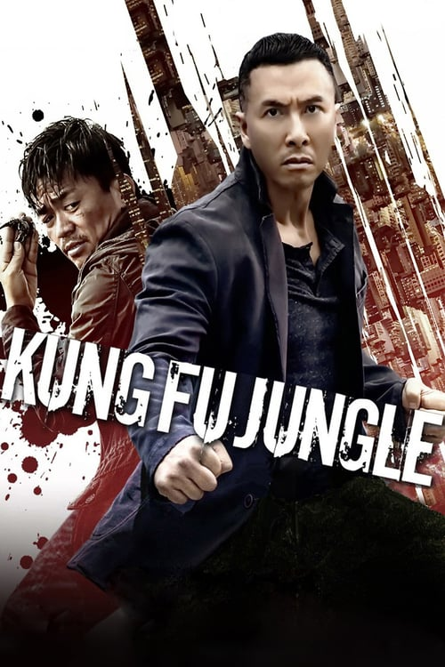 Kung Fu Jungle – 一个人的武林 [2014]