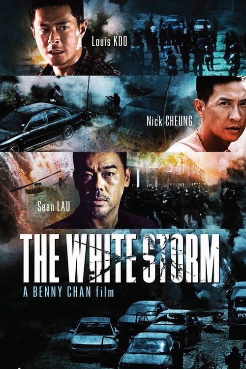 The White Storm – 扫毒
