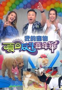 Fluffies Arena Summer Special – 我的寵物夏日反斗嘉年華