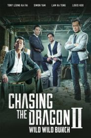 Chasing the Dragon II: Wild Wild Bunch – 追龙Ⅱ [2019]