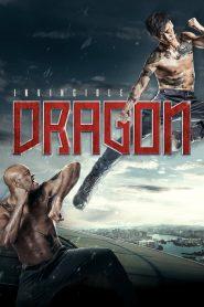 The Invincible Dragon – 九龍不敗